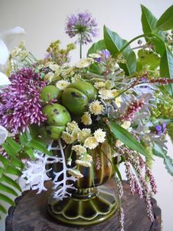 hicknutgreenvaseladysthumbweed