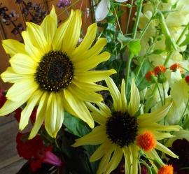 bouquetsunflowers
