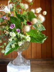 button bush arrangement